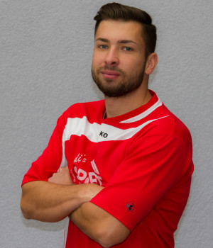 Eldin Sipovic